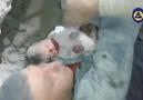 İdlibte enkazdan sağ kurtulan bir bebek Hasbunallahi we nı&wekil
