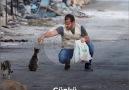 İHH İnsani Yardım Vakfı - Sokak hayvanları unutulmadı Facebook