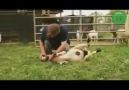 İlginç Videolar Beğen & Paylaş