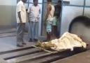 İlhan Cantürk - Hinduların ölüyü yakmaları !Allah Hidayet...