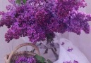 I love lilacs!**..**