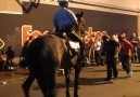 In New Orleans even the police horses boogie out.