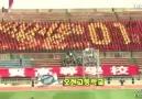 İnsandan Lcd Yapan Güney Koreliler