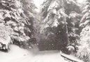 Invierno By Senna Relax