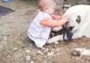 İspir Sayfası - İspir&Çocukla Kangalın DostluğuVideo...