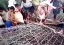 Israil Boykotu - MYANMAR... Facebook