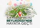 İstanbul&15 Yaşam Vadisi Yapacağız.