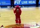 İşte Chicago Bulls'un yaramaz boğası!