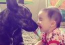 It&just a little kiss!