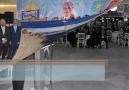 İYİ Parti Erenler Belediye Meclis Üyeleri Aday Tanıtım Toplantısı