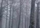 İzmitliler - Kartepe&kar yağışına devam