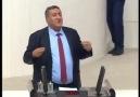 Jale Şenol - Cumhuriyet Halk Partisi (CHP) Milletvekili...