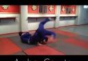 Judo Ne waza Fuente Collier Judo Method