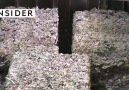 Kağıt havluların üretim süreci.