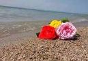 KamanSavcılı büyükoba plajı yaza hazırlanıyor.