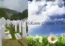 Kamil Sıtkı - Kim üşürse beni hatırlasın...