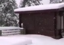 Karadeniz&Gülü - Her yerde kar var Facebook