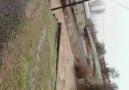 KARAKOÇAN HABER GAZETESİ - Yalanciyan akbulak köyü Facebook