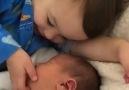 Kardeş sevgisi - ANNE VE Bebek Sayfasi