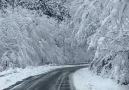 Karlar İçinde Huzur Dolu YolculukYer GiresunDereli