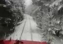 Kars Sitesi - Herkes trenin bir yerinden foto video...