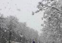 Kar yağışını hiç böyle izlediniz mi? (Ağır çekim)