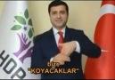 1 Kasım'da HDP :D