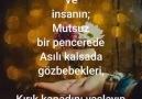 Kayıp Yürekler le 2 juillet