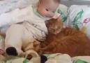 Kedi ve Bebeğin Birbirine Sarılması