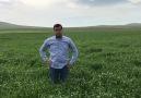 Kerim çetin - Tüm çiftçilerimizin 14 Mayıs Dünya çiftçiler...