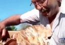 Kim demiş Türkiyede Magic Mushroom yok diye