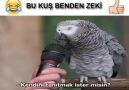 Kim kuş beyinli izle bakalım.. Paylaş lütfen..