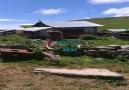 Kirazlı (balvana) Köyü Yaylası Ağustos 2016ya ait videosu.
