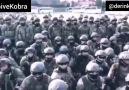 KİRPİ ve KOBRA - Bu Sese Kulak VerinTecrübeli Komutan...