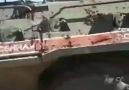 KİRPİ ve KOBRA - Suriye de ki devriye faaliyetleri...