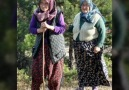 Kırşehir Bozlak - Anam