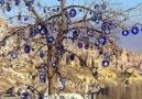 Kırşehir Bozlak - Okan Babacan * Kendime bir düzen kurdum *