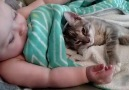 Kitten and Baby are Best Friends