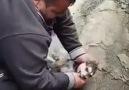 Köpeği Kalp Masajı ile Hayata Döndüren... - Dualarımla Sevdim