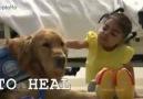 Köpeklerle ilgili süper bi video..