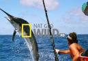 Korkusuz Balıkçılar - Fragman