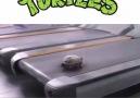 Koşu bandındaki kaplumbağa