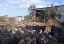 Koyunların Üzerinden Uçarak Giden Çoban Köpeği