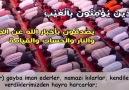 Kuranım cennetim - Bakara Suresi Şeyh Faris Abbad Facebook