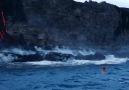 Lavların Önünde Sörf Yapan Kadın