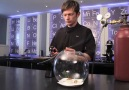 Levitating Biosphere by  Ben Roche at Moto Restaurant