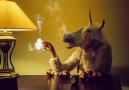 Licorne du soir Elena Vizerskaya Art animation by Michael Schneidhofer