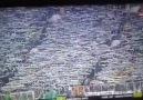 Lig Tv'de Şansal Büyüka Bursaspor Tribün hayranlığı