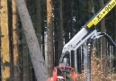 Love Building - Wood cutting machine Facebook
