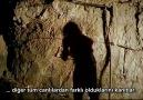 Mağara Adamları İle Yürümek (8/8)